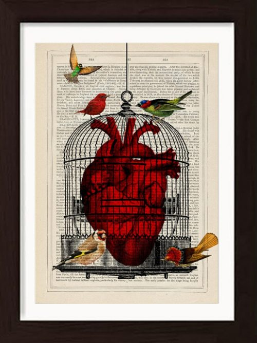 image of an anatomical heart in a birdcage with birds