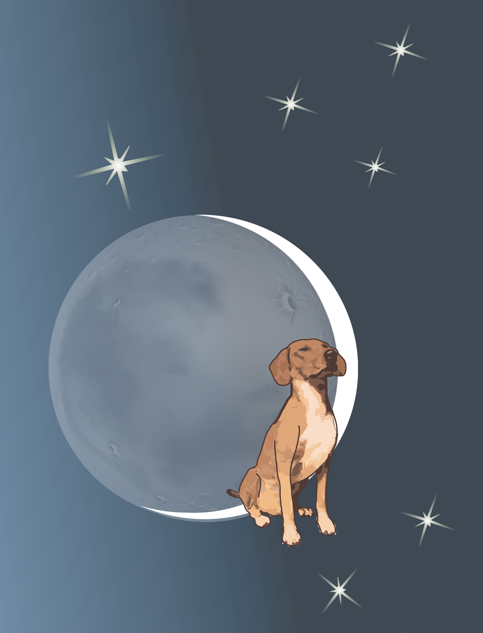 Apollo dog with moon and stars