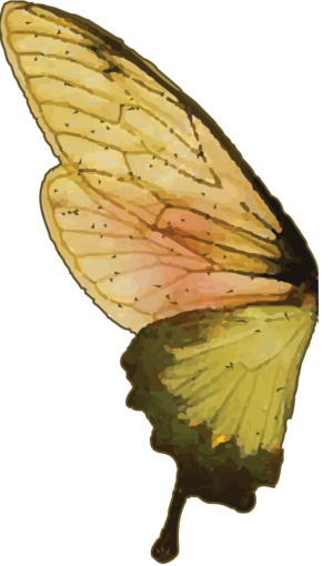 Badass Butterfly Left Wing
