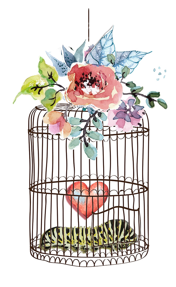 Crystal Lynn Bell Badass Butterfly watercolor flowers and bird cage